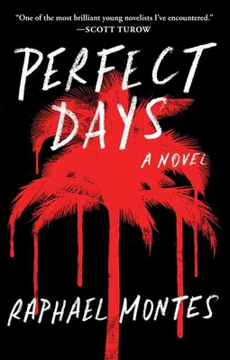 Book Perfect Days: A Novel by Raphael Montes