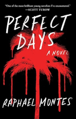 Book Perfect Days by Raphael Montes