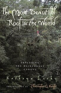 The Most Beautiful Roof in the World: Exploring the Rainforest Canopy