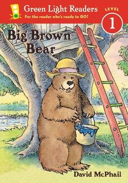 Book Big Brown Bear by David McPhail