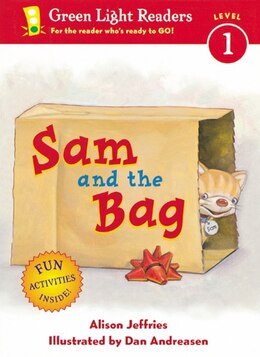 Book Sam and the Bag by Alison Jeffries