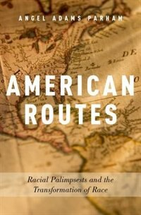 Book American Routes: Racial Palimpsests and the Transformation of Race by Angel Adams Parham