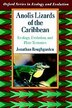 Anolis Lizards of the Caribbean: Ecology, Evolution, and Plate Tectonics by Jonathan Roughgarden