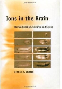 Book Ions in the Brain: Normal Function, Seizures, and Stroke by George G. Somjen