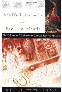 Book Stuffed Animals and Pickled Heads: The Culture and Evolution of Natural History Museums by Stephen T. Asma