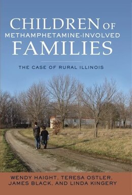 Book Helping Children of Rural, Methamphetamine-Involved Families by Wendy Haight