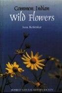 Common Indian Wild Flowers