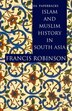 Islam and Muslim History in South Asia by Francis Robinson