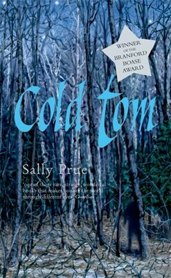 Book Rollercoasters: Cold Tom Reader by Sally Prue