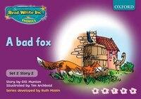 Read Write Inc. Phonics: Purple Set 2 Storybooks School Pack of 100 (10x10 titles)