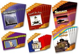 Book Oxford Reading Tree: Stage 6: Fireflies Class Pack (36 books, 6 of each title) by Thelma Page