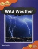 Book Oxford Reading Tree: Stage 6 New Edition Wild Weather by Ben Smith