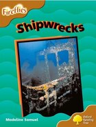 Oxford Reading Tree: Stage 8: Fireflies Shipwrecks