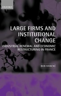Large Firms and Institutional Change: Industrial Renewal and Economic Restructuring in France