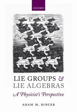 Book Lie Groups and Lie Algebras - A Physicists Perspective by Adam M. Bincer