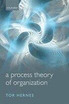 A Process Theory of Organization