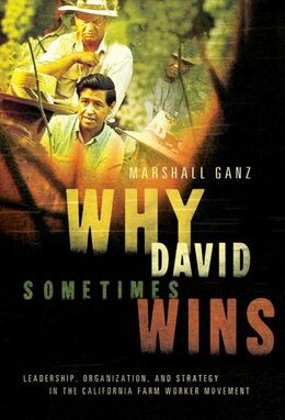 Book Why David Sometimes Wins: Leadership, Organization, and Strategy in the California Farm Worker… by Marshall Ganz