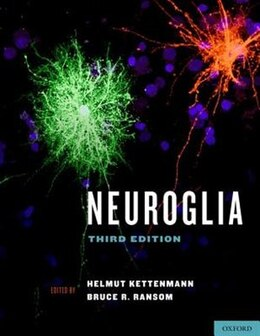 Book Neuroglia by Helmut Kettenmann
