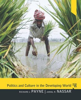 Book Politics and Culture in the Developing World by Richard J Payne
