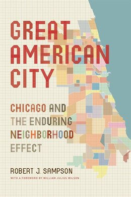 Book Great American City: Chicago And The Enduring Neighborhood Effect by Robert J. Sampson