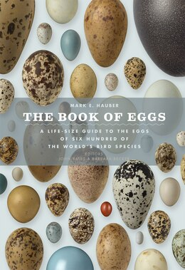 Book The Book Of Eggs: A Life-size Guide To The Eggs Of Six Hundred Of The World's Bird Species by Mark E. Hauber