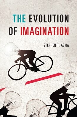 Book The Evolution Of Imagination by Stephen T. Asma