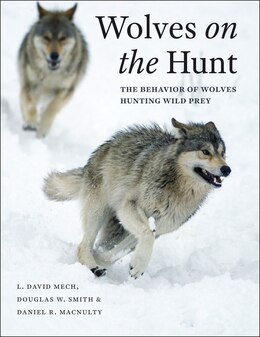Book Wolves On The Hunt: The Behavior Of Wolves Hunting Wild Prey by L. David Mech