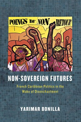 Book Non-sovereign Futures: French Caribbean Politics In The Wake Of Disenchantment by Yarimar Bonilla