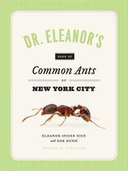 Book Dr. Eleanor's Book Of Common Ants Of New York City by Eleanor Spicer Rice