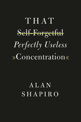 Book That Self-forgetful Perfectly Useless Concentration by Alan Shapiro