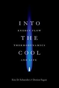 Book Into The Cool: Energy Flow, Thermodynamics, And Life by Eric D. Schneider