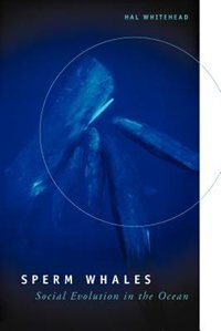 Book Sperm Whales: Social Evolution in the Ocean by Hal Whitehead