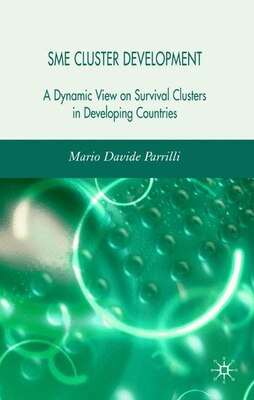 Book Sme Cluster Development: A Dynamic View of Survival Clusters in Developing Countries by Mario Davide Parrilli