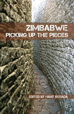 Book Zimbabwe: Picking up the Pieces by Hany Besada