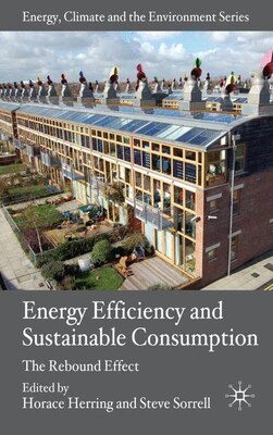 Book Energy Efficiency And Sustainable Consumption: The Rebound Effect by H. Herring
