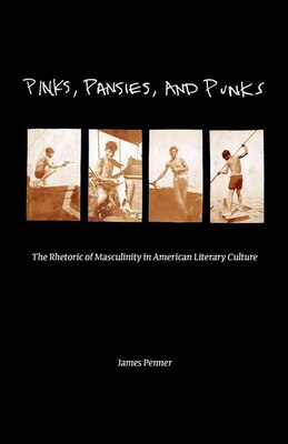 Book Pinks, Pansies, And Punks: The Rhetoric Of Masculinity In American Literary Culture by James Penner