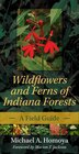 Wildflowers And Ferns Of Indiana Forests: A Field Guide by Michael A. Homoya