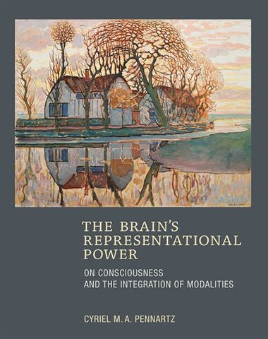 The Brain's Representational Power: On Consciousness And The Integration Of Modalities by Cyriel M.a. Pennartz