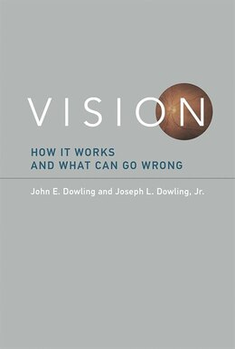 Book Vision: How It Works And What Can Go Wrong by John E. Dowling