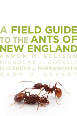 Book A Field Guide to the Ants of New England by Aaron M. Ellison