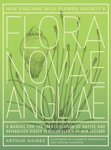 New England Wild Flower Society's Flora Novae Angliae: A Manual for the Identification of Native and Naturalized Higher Vascular Plants of New England by Arthur Haines