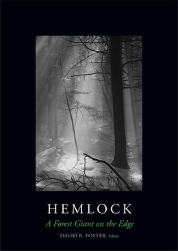 Book Hemlock: A Forest Giant On The Edge by Anthony D'Amato