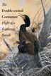 The Double-crested Cormorant: Plight Of A Feathered Pariah by Linda R. Wires