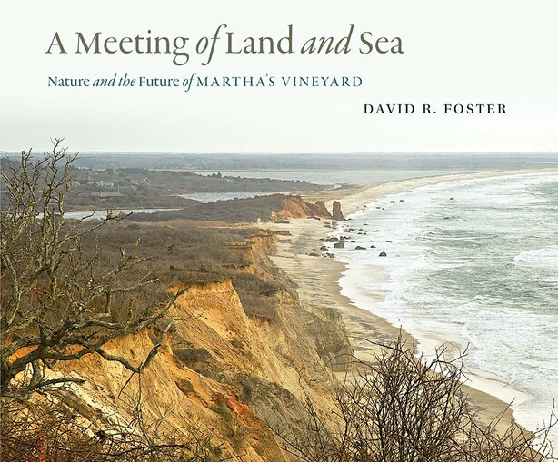 A Meeting Of Land And Sea: Nature And The Future Of Martha's Vineyard by David R. Foster