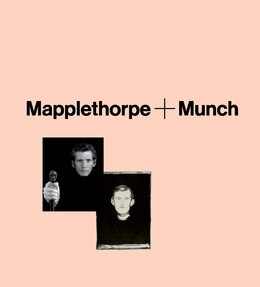 Book Mapplethorpe + Munch by Richard Meyer