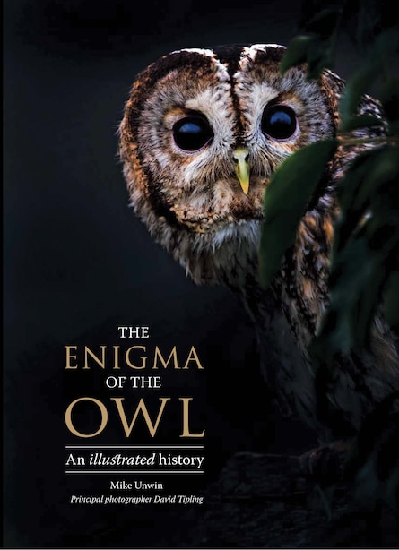 The Enigma Of The Owl: An Illustrated Natural History by Mike Unwin