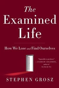 Book The Examined Life: How We Lose And Find Ourselves by Stephen Grosz