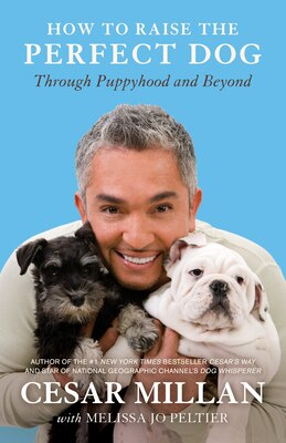 Book How To Raise The Perfect Dog: Through Puppyhood And Beyond by Cesar Millan