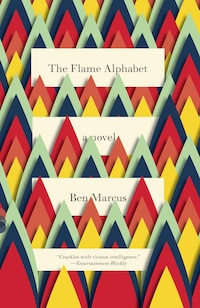 The Flame Alphabet: A Novel