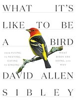 What It's Like To Be A Bird: From Flying To Nesting, Eating To Singing--what Birds Are Doing, And…
